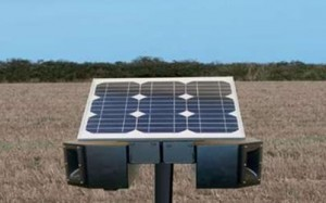 solar powered bird scarer